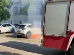 东风本田X-NV电动汽车起火燃烧